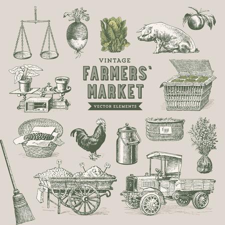 gallo: mercado de los granjeros - conjunto de elementos vectoriales nostálgicos