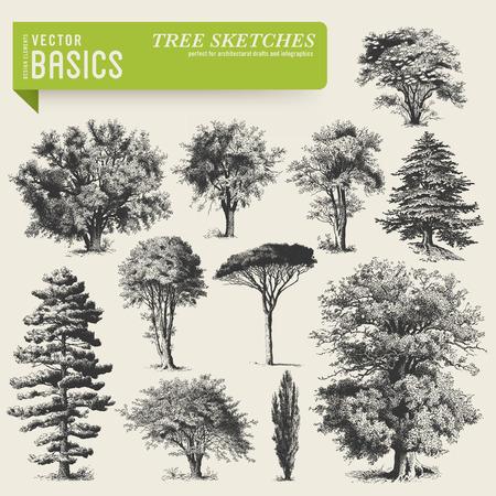 fa: vektorelemeknek fa vázlatok Illusztráció