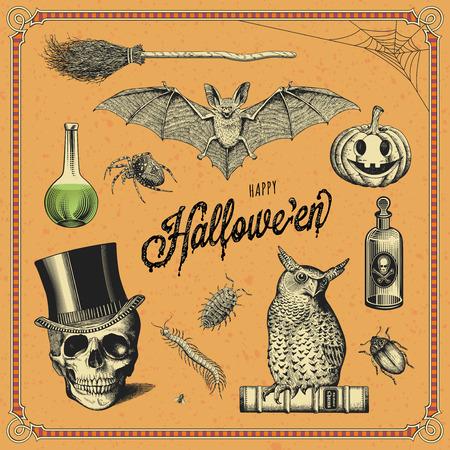 hand-drawn halloween design elements 일러스트
