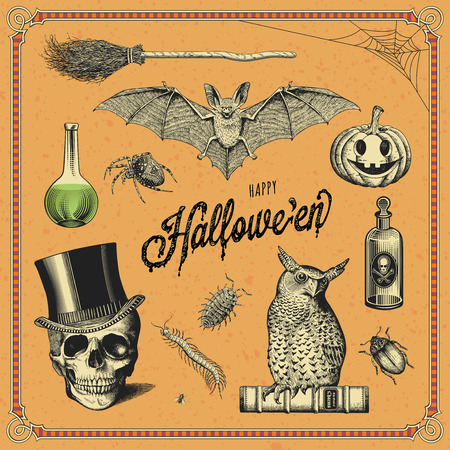 hand-drawn halloween design elements Stock Illustratie