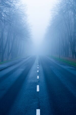 Road through a foggy forest into the distance in detail Banque d'images
