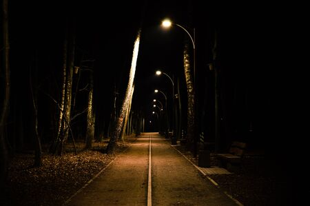 Road in a night park lit by lanterns close up Stock Photo