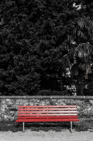 Red wooden bench on a background of green foliage close up