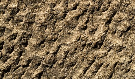 The texture of porous rough stone close-up in detail