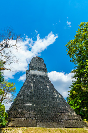 Maya pyramid in the rainforest by Tikal in Guatemala Stock Photo