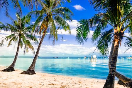 Phu quoc の島ベトナムでターコイズのパーム ビーチを見る
