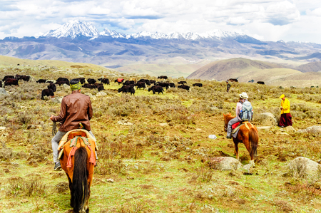 View on Horse Trekker and Yak herds with nomads in the highlands of Sichuan