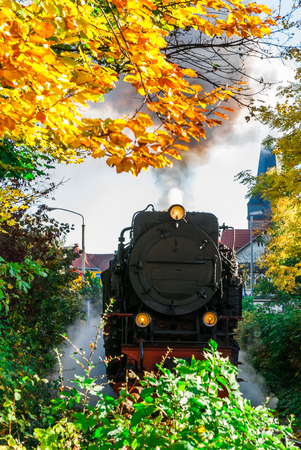 View on narrow gauge steam train in Wernigerode - Harz - Germany Stock Photo