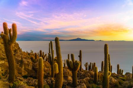 Bolivia의 Uyuni 호수로 Incahuasi 섬의 석양을 볼 수 있습니다.