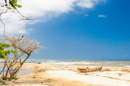 View on Lonely beach by palomino in Colombia Stock Photo