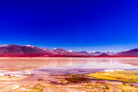 View on colorful laguna Blanca in the Altiplano of Bolivia
