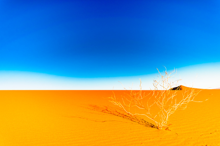 View on dunes in the Sahara desert next ot Mhamid in Morocco