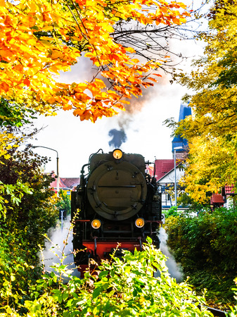 View on Narrow-gauge railway in autumn landscape of Wernigerode - Germany