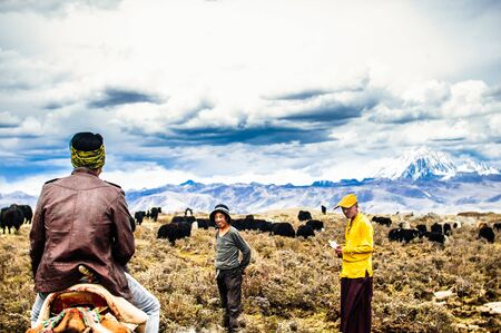 Tagong grassland, China on 12th May 2015 - Tibetan nomads and Yak cattles