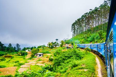 View from a train near Ella, running through tea fields. Sri Lanka