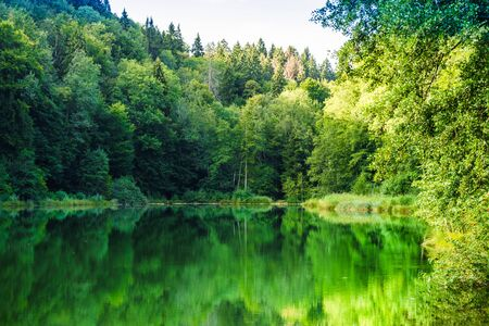View on natural lake Egelsee by Bergdietikon next to Zurich - Switzerland