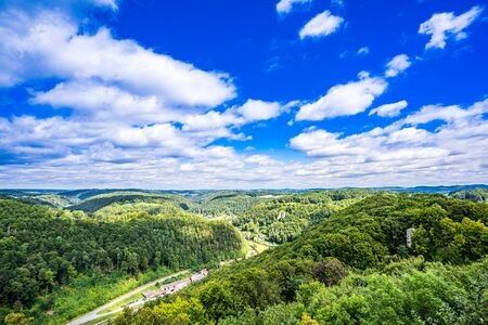 View on summer Forest in Frankonia Germany