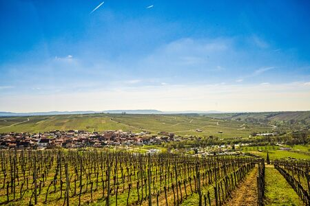 View over the idyllic Main Valley, the vineyards, the Main Loop at the town of Volkach - Germany