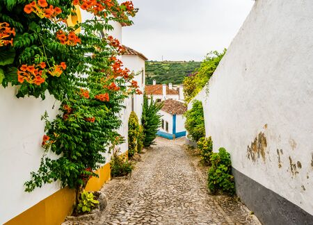 Narrow White Blue Street in Mediieval City Obidos Portugal 免版税图像 - 142126357