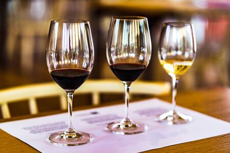 Degustation of white and red port wine in tasting room, Portugal