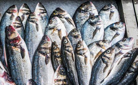 Fresh fish on ice on market in Oporto, Portugal 免版税图像