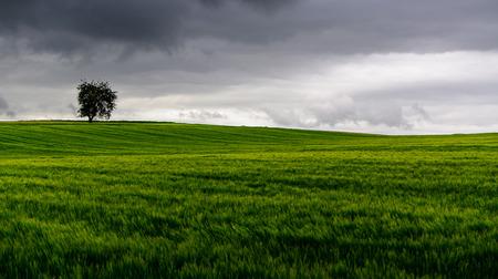 aloneness: storm