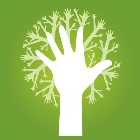 reforestaci�n: manos de �rbol en fondo verde oliva. Vector.