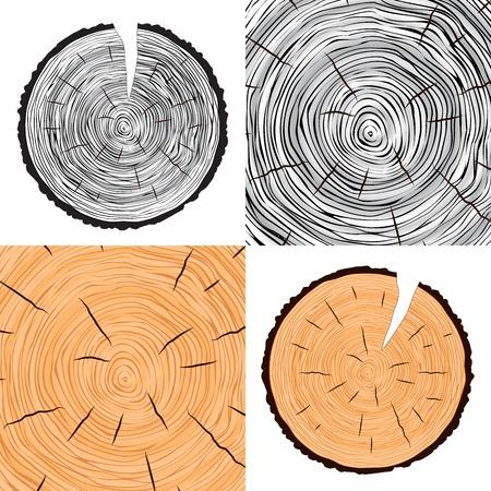 cut logs: Anillos de los �rboles de fondo de �rbol anual conjunto de vectores
