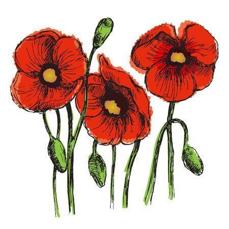 converted: Flowers set color. Sketch converted to vectors. Illustration