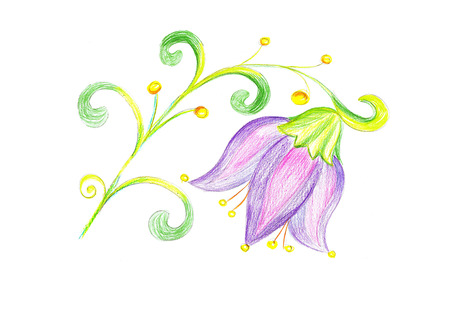 flower bluebell drawing on paperfloral template photo