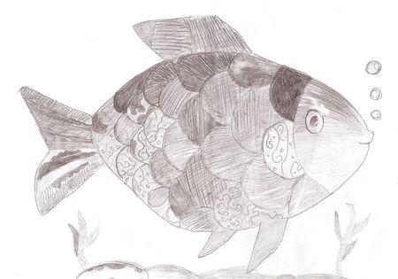 funny fish: Funny fish pencil drawing sketch.