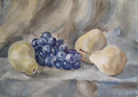 still life: Still Life with Pears and Grapes. Watercolor Stock Photo