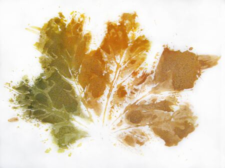 imprint: Painting of Autumnal Maple Leaf silhouette. Imprint