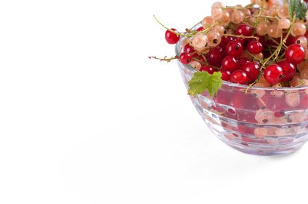 Fresh juicy currant isolated