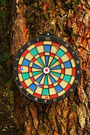 Dart board on tree