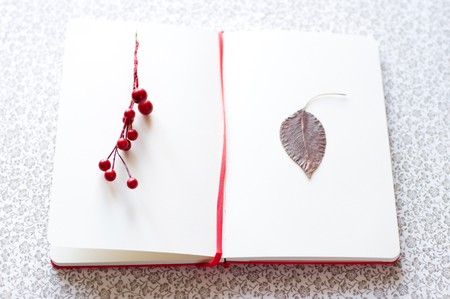 stylesheet: romantic letter with berries and leaf
