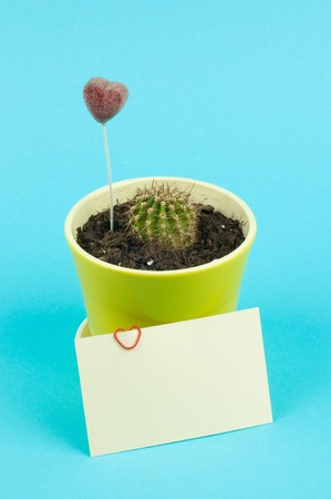 photosynthetic: Cactus in pot with card and decorative hearts