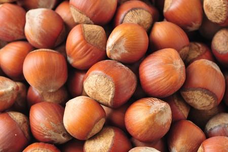 hazelnuts background photo