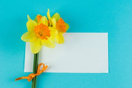 yellow narcissuses bouquet and paper card Stock Photo