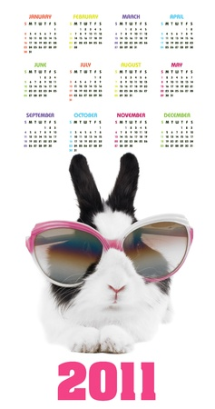 Vertical color calendar for 2011 year with rabbit in sunglasses
