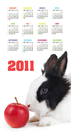 Vertical color calendar for 2011 year with rabbit and red apple  photo
