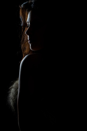 silhouette of beautiful sexy girl in fur on black Stock Photo - 12815303