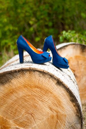 Blue wedding accessories on wood Stock Photo - 15407847