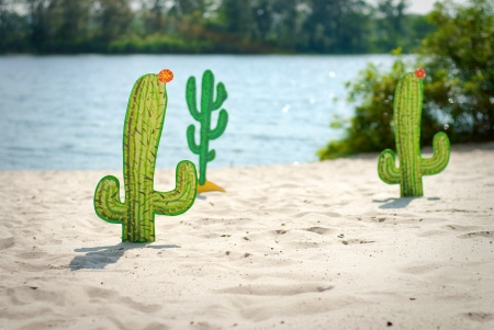 Funny cartoon cactuses in desert photo