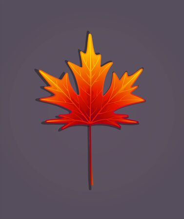 Colorful autumn maple leaf. Red, yellow, orange color. Vector illustration on a dark background.