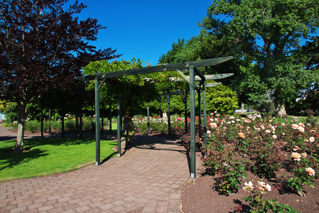 Rotorua city by the lake, New Zealand