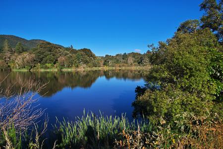 Beautiful nature in New Zealand