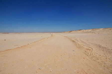 The road in sahara desert