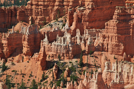 Bryce Canyon in Utah, USA Фото со стока