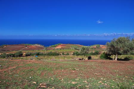 View on Mediterranean coast in Algeria, Africa Archivio Fotografico
